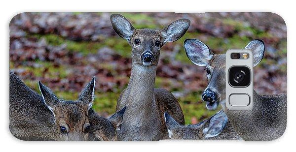 Deer Gathering Galaxy Case