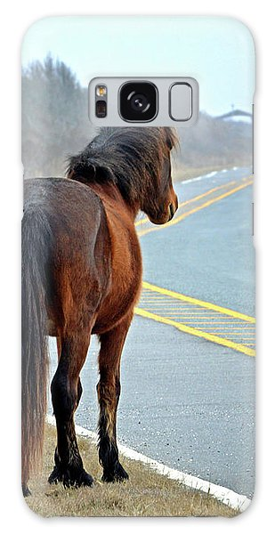 Galaxy Case featuring the photograph Delegate's Pride Awaiting Tourists On Assateague Island by Bill Swartwout Fine Art Photography