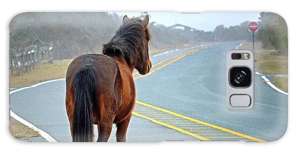 Delegats's Pride Looking For Visitors To Assateague Island Galaxy Case