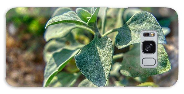 Desert Plant Life Galaxy Case
