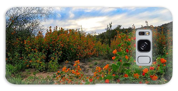 Desert Wildflowers In The Valley Galaxy Case