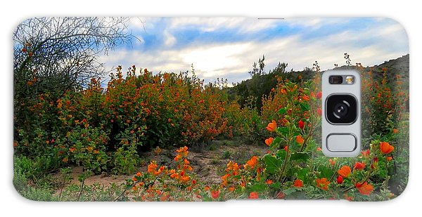 Desert Wildflowers In The Valley Galaxy Case