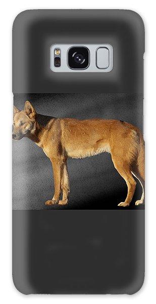 Dingo Galaxy Case