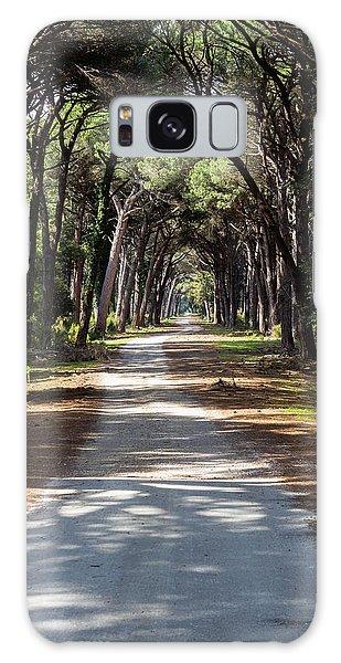 Dirt Pathway In A Mediterranean Pine Forest Galaxy Case