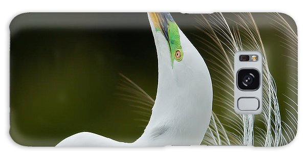 Egret Galaxy Case - Displaying Great Egret, Kissimmee by Matt  Elliott