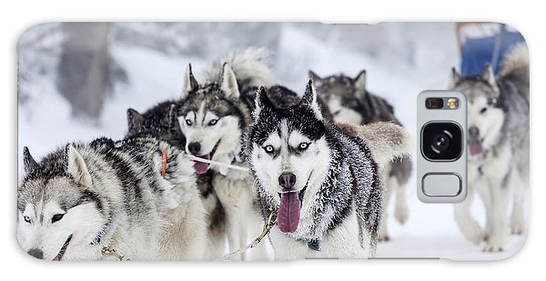 Breathe Galaxy Case - Dog-sledding With Huskies by Melinda Nagy