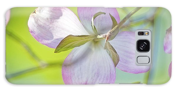 Galaxy Case - Dogwood Blossom In Spring by A Gurmankin