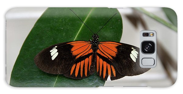 Doris Longwing On Leaf Galaxy Case