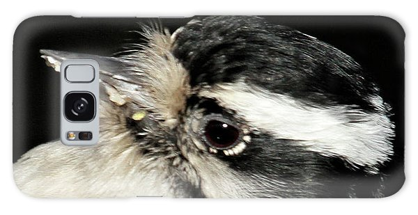 Downy Woodpecker Female Galaxy Case
