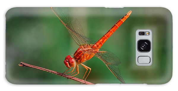 Bright Colors Galaxy Case - Dragonfly, Macro Dragonfly, Dragonfly by Wanida Tubtawee