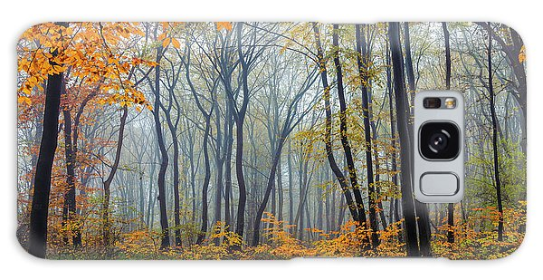 Dream Forest Galaxy Case