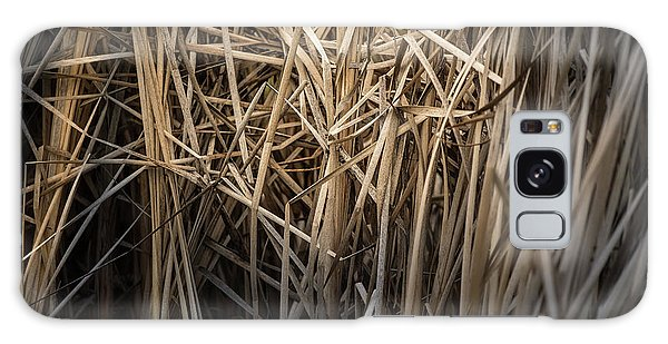 Dried Wild Grass II Galaxy Case