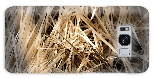 Dried Wild Grass I Galaxy Case
