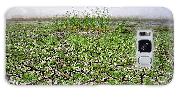 Dry Duck Pond Galaxy Case