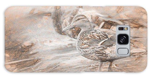 Ducks On Shore Da Vinci Galaxy Case
