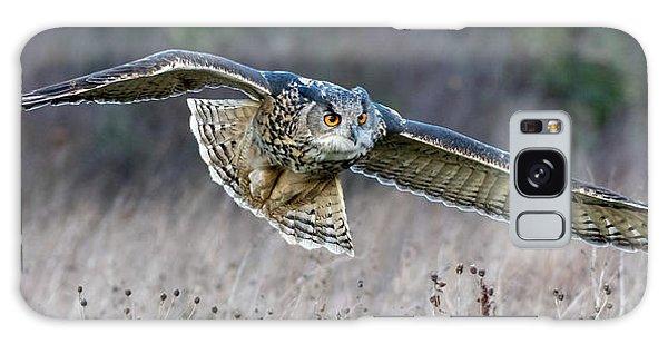 Eagle Owl Gliding Galaxy Case