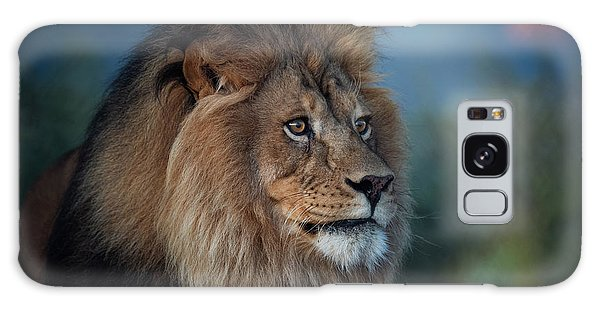 Early Morning Lion Portrait Galaxy Case