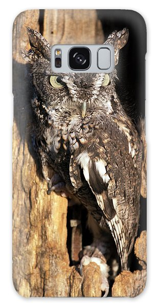 Eastern Screech Owl 92515 Galaxy Case