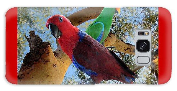 Eclectus Parrots Galaxy Case