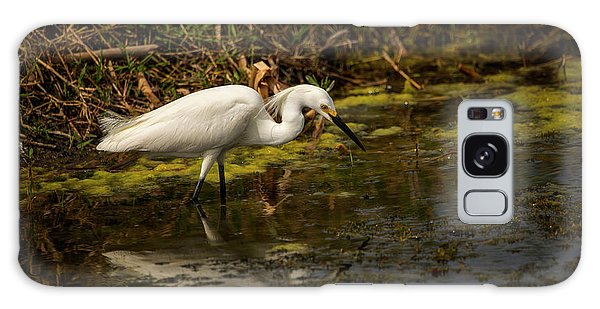 Egret Hunts Galaxy Case