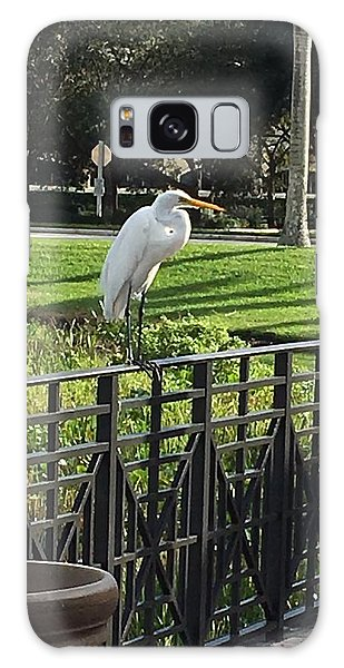 Egret Posing Galaxy Case