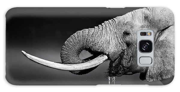 Horizontal Galaxy Case - Elephant Bull With Large Tusks Drinking by Johan Swanepoel