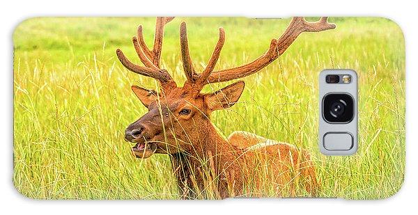 Elk Galaxy Case
