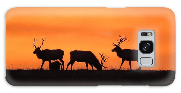 Elk In The Morning Light Galaxy Case