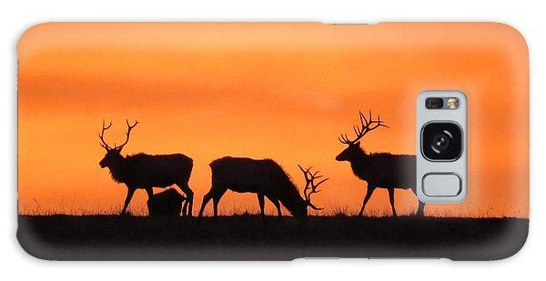 Elk In The Morning Light Galaxy Case