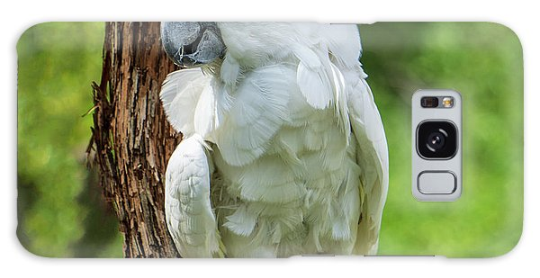 Endangered White Cockatoo Galaxy Case