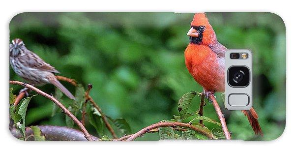 Envy - Northern Cardinal Regal Galaxy Case