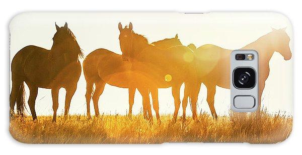 Horse Galaxy Case - Equine Glow by Todd Klassy