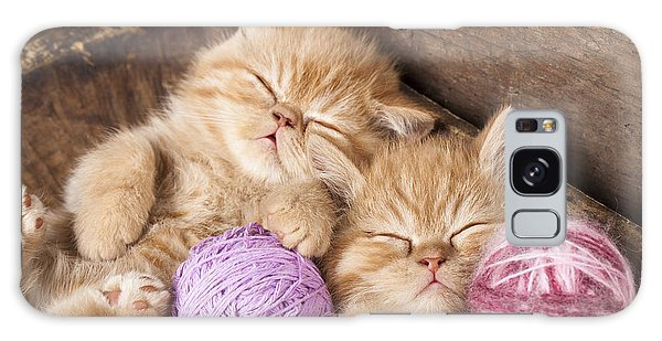 Furry Galaxy Case - Exotic Kittens   Sleeping With A Ball by Liliya Kulianionak