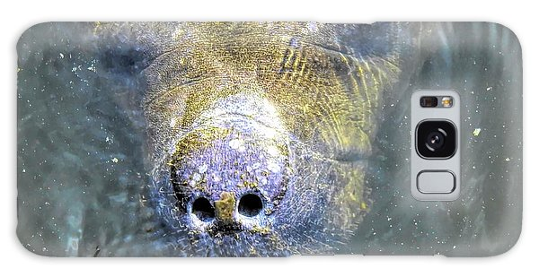 Face Of The Manatee Galaxy Case
