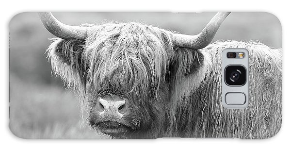 Face-to-face With A Highland Cow - Black And White Galaxy Case