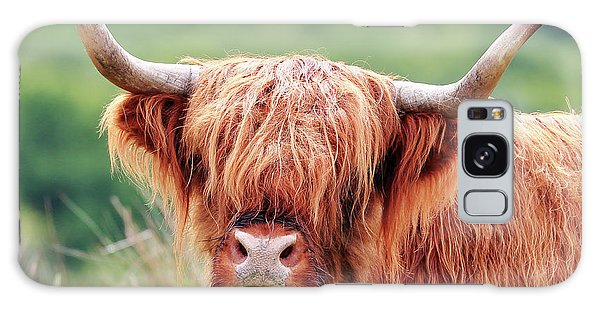 Face-to-face With A Highland Cow Galaxy Case