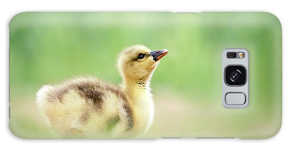 Gosling Galaxy Case - Facing A Brand New Future by Roeselien Raimond
