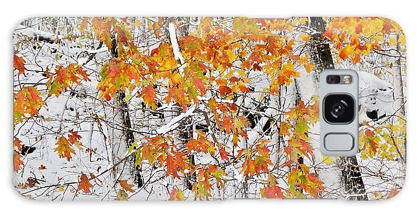 Fall And Snow Galaxy Case