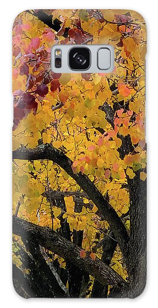 Fall In Carlyle Galaxy Case