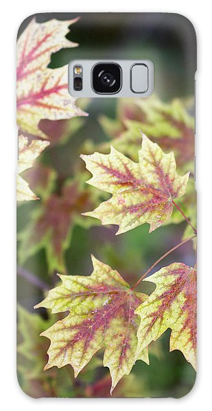 Fall Red And Yellow Leaves 10081501 Galaxy Case