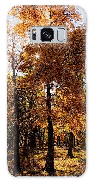 Galaxy Case featuring the photograph Fall Sunshine by Scott Bean