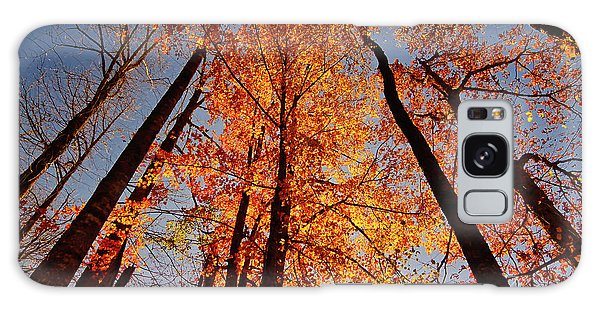 Fall Trees Sky Galaxy Case
