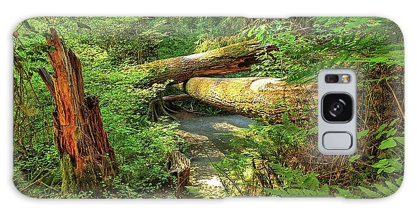 Fallen Trees In The Hoh Rain Forest Galaxy Case