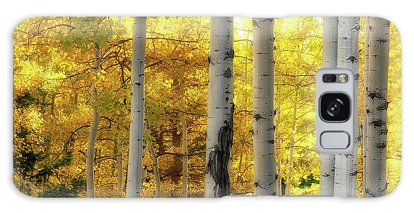 Galaxy Case featuring the photograph Fall's Visitation by Rick Furmanek