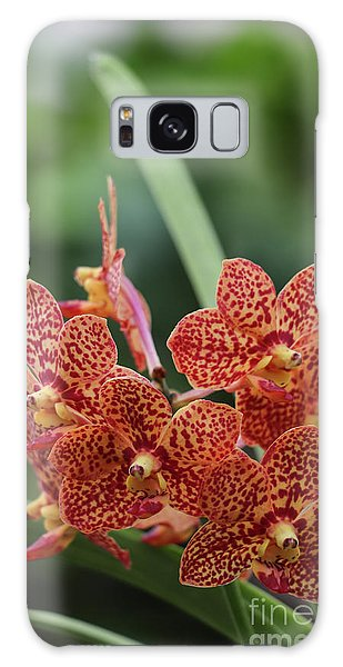 Family Of Orange Spotted Orchids Galaxy Case