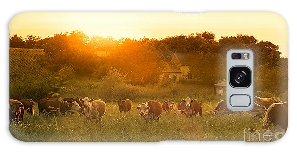 Farmland Galaxy Case - Farmland Summer Scene In Sunset by Dark Moon Pictures