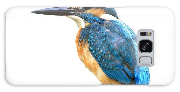 Perches Galaxy Case - Fascinated Blue Bird, Common Kingfisher by Super Prin