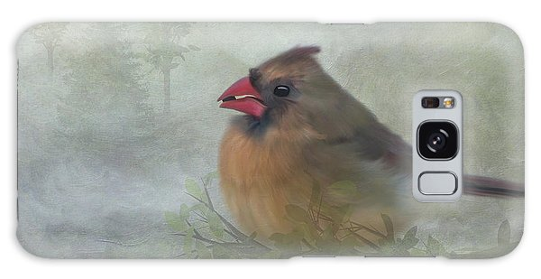 Female Cardinal With Seed Galaxy Case
