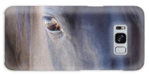 Fenced Foal Galaxy Case