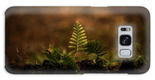 Fern Of Life Galaxy Case
